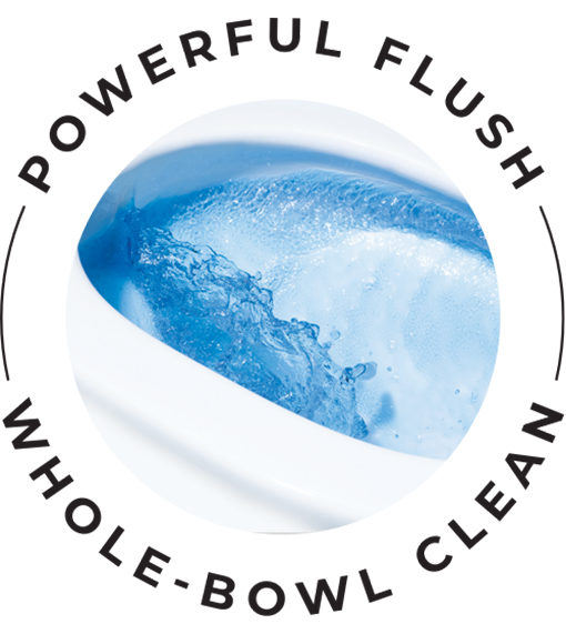 Cleanflush powerful flush